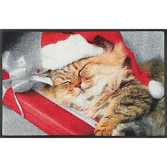 wash + dry mat sleeping kitty 50 x 75 cm dirt mat cat motif