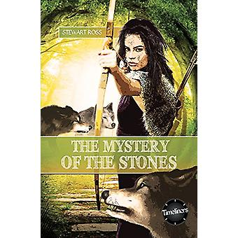 The Mystery of the Stones by Stewart Ross - 9781783226238 Book