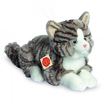 Hermann Teddy Cuddle gato gris tigre paisaje