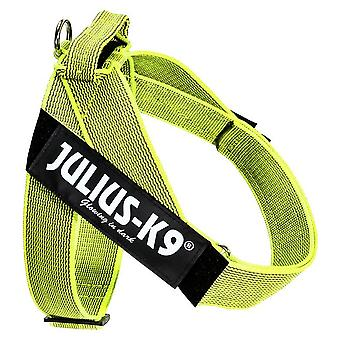 Julius K9 Arnes IDC Cinta Color & Gray (Chiens , Colliers, laisses et harnais , Harnais)