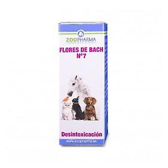 ZooPharma Detoxification 10 Gr. (Dogs , Training Aids , Behaviour)