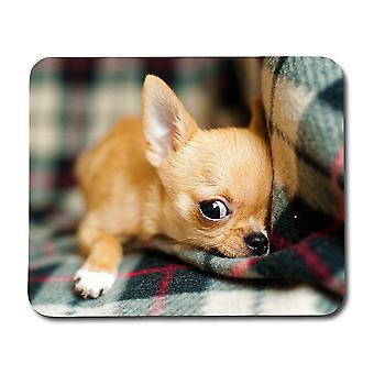 Chihuahua cucciolo mouse Pad