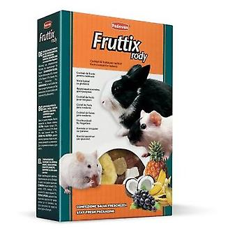 Padovan Pienso Fruttix Rody (Small pets , Dry Food and Mixtures)