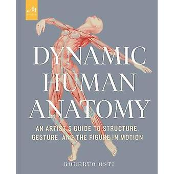 Dynamic Human Anatomy An Artist's Guide to Structure Gesture and the Figure in Motion