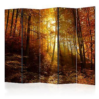 Biombo - Autumn Illumination II [Room Dividers]