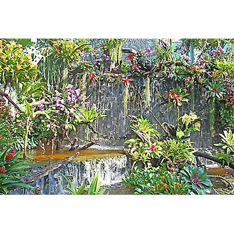 Tapeta Mural Wodospad w ogrodzie