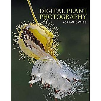 Digital Plant Photography