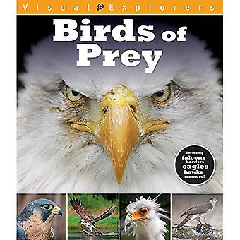 Birds of Prey (Visual Explorers)