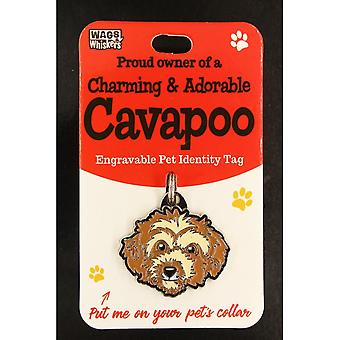 Wags & Whiskers Pet Identity Tag - Cavapoo
