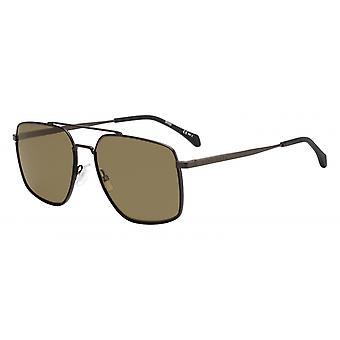 Sunglasses Men 1091/Ssvk/70 Men's Brown/Brown