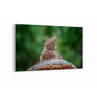 Schilderij - Bebaarde draak — 90x60cm