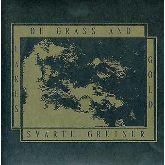 Laghi di erba & Gold/Svarte Greiner - paesaggio di occhi aperti [Vinyl] USA importare