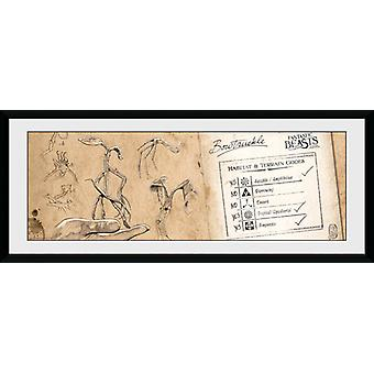 Fantastic Beasts Bow Truckle Framed Collector Print