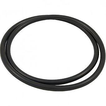 Hayward CX900F Filter Head O-Ring