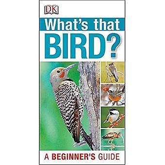Was ist dieser Vogel?