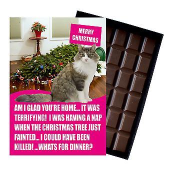 Ragdoll kot Boże Narodzenie prezent śmieszne Xmas prezenty dla miłośników kotów pudełkowych czekoladowe karty okolicznościowe