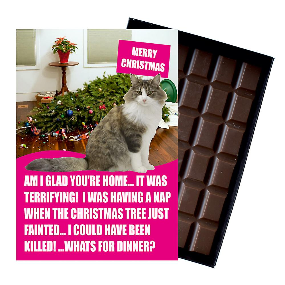 Ragdoll Cat Christmas Gift Funny Xmas Presents for Cat Lovers Boxed Chocolate Greeting Card