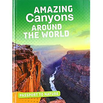 Amazing Canyons Around the World by Gail Terp - 9781474774680 Book