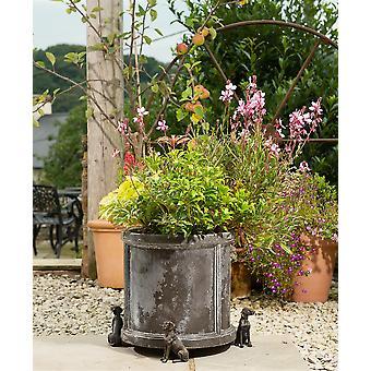 Potty Feet Weimaraner Dog Themed Plant Pot Feet - Bronze Color - Set of 3