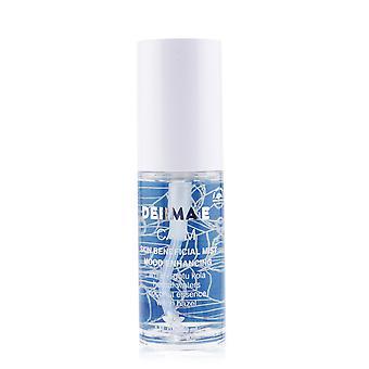 Mood enhancing calm skin beneficial mist 250300 30ml/1oz