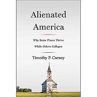 Vervreemd Amerika: Waarom sommige plaatsen gedijen terwijl anderen samenvouwen