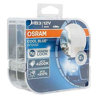 Automotive Bulb OS9005CBI-HCB Osram HB3 60W 12V 4200K (2 Pieces)