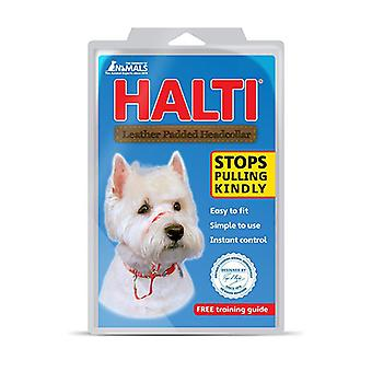 HALTI Headcollar de perro acolchada