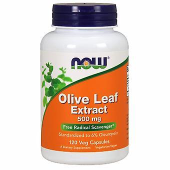 Agora alimentos Extrato da Folha de Oliveira 500 mgs, 120 Vcaps