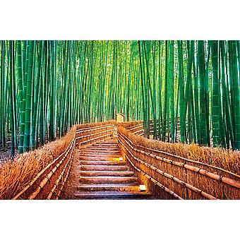 Taustakuva seinämaalaus bambu metsä Kiotossa (400x260 cm)