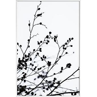 JUNIQE Print - Siluetas de Invierno 1 - Póster de Hojas y Plantas en Blanco y Negro