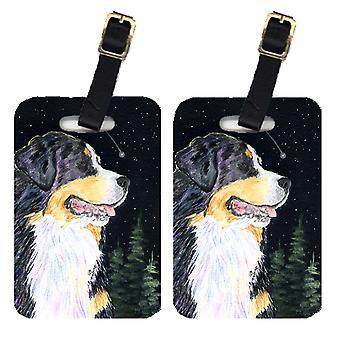 Carolines Treasures  SS8512BT Starry Night Bernese Mountain Dog Luggage Tags Pai
