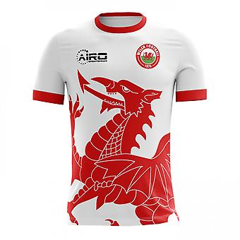 Koszuli piłki nożnej 2018-2019 Walii od koncepcji (dla dzieci)