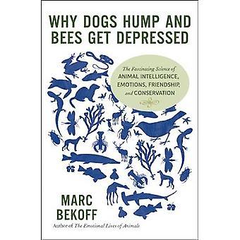 Perché i cani Hump e le api vengono depressi l'affascinante scienza dell'intelligenza animale Emozioni Amicizia e Conservazione di Marc Bekoff