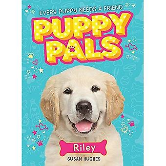 Riley (valp Pals)