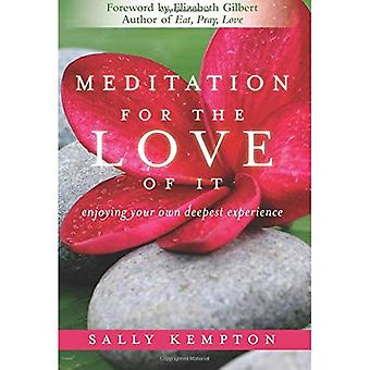 Meditation for the Love of it: Enjoying Your Own Deepest Experience