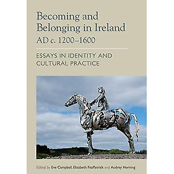 Steeds en thuishoren in Ierland AD c. 1200-1600: Essays over de identiteit en culturele praktijk