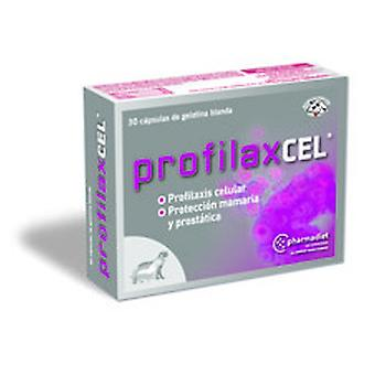 Farmadiet Profilaxcel 30 Capsules (Dogs , Supplements)