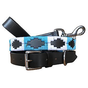 Carlos diaz genuine leather  polo dog collar and lead set cdhkplc14