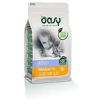 Oasy Adult Chicken (Cats , Cat Food , Dry Food)