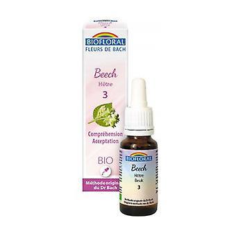 Organic beech 20 ml of floral elixir