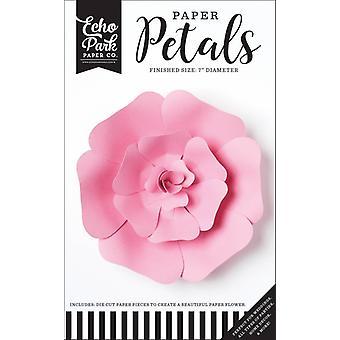 صدى بارك ورقة بتلات صغيرة الوردي وردة