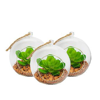 Nicola Spring Glass Plant Terrarium Set for Succulent Plants Ferns Cactus - Tabletop or Hanging Display - 120mm - Pack of 3