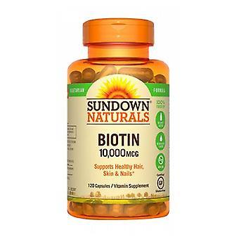 Sundown Naturals Vegetarian Biotin, 10000 mcg, 12 X 120 Caps