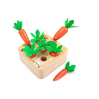 Montessori Toys For Toddlers 1 To 3 Years Old, Developmental Wooden Toys Carrot Shape