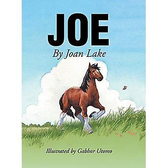 Joe by Joan Lake - 9781644717776 Book