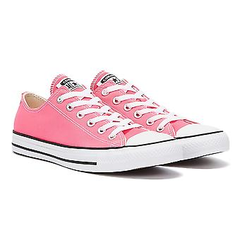 Converse All Star Ox Womens Pink Trainers