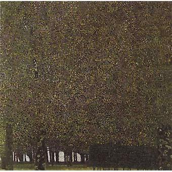 Beech Forest I, Gustav KLIMT, 50x50cm