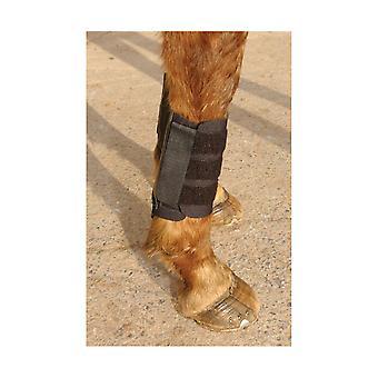 KITT Kool Brushing Boots (Pack Of 2)