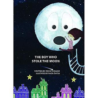 Il ragazzo che ha rubato la luna: storia libro