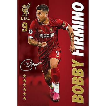 Liverpool FC Underskrift Firmino Plakat